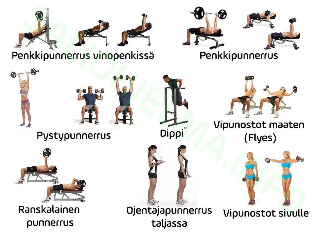 Työntävät lihakset