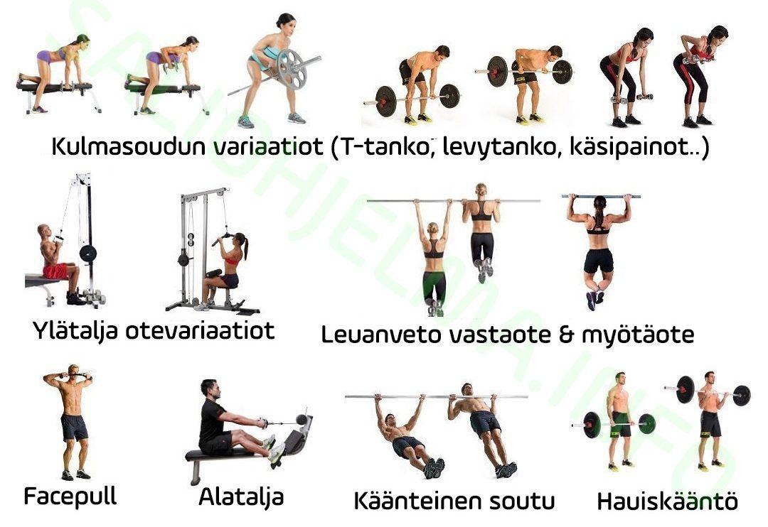 Vetävät lihakset